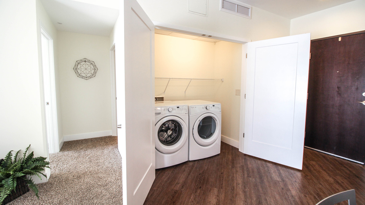 View of front loading washer and dryer in large entryway closet.